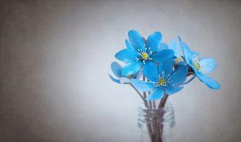 flores azuis em fundo branco acizentado no gargalo de garrafa
