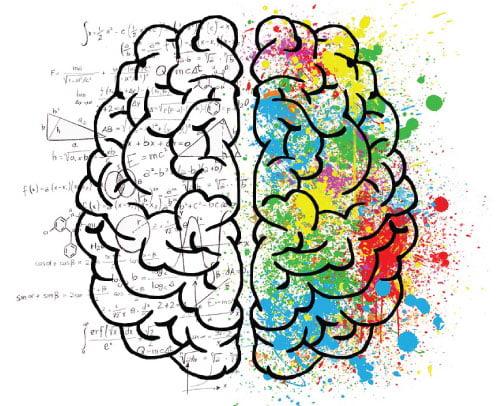 cerebro divido em dois. A parte esquerda é a parte racional, a parte direita, a criativa.