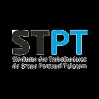 stpt_300-300